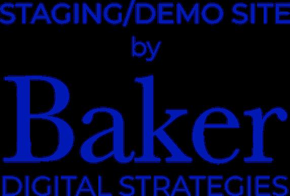 Staging Demo Site by Baker Digital Strategies